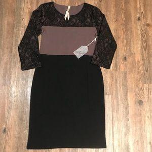 Classy Black and Tan dress